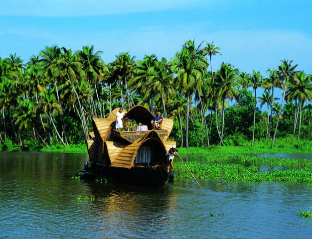 体験たっぷり!南インドの楽園で森林浴とサファリとクルーズ 神の国ケララ自然紀行