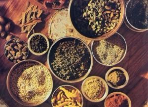 (11-EZ-6)五感で味わうインド マサラの旅
